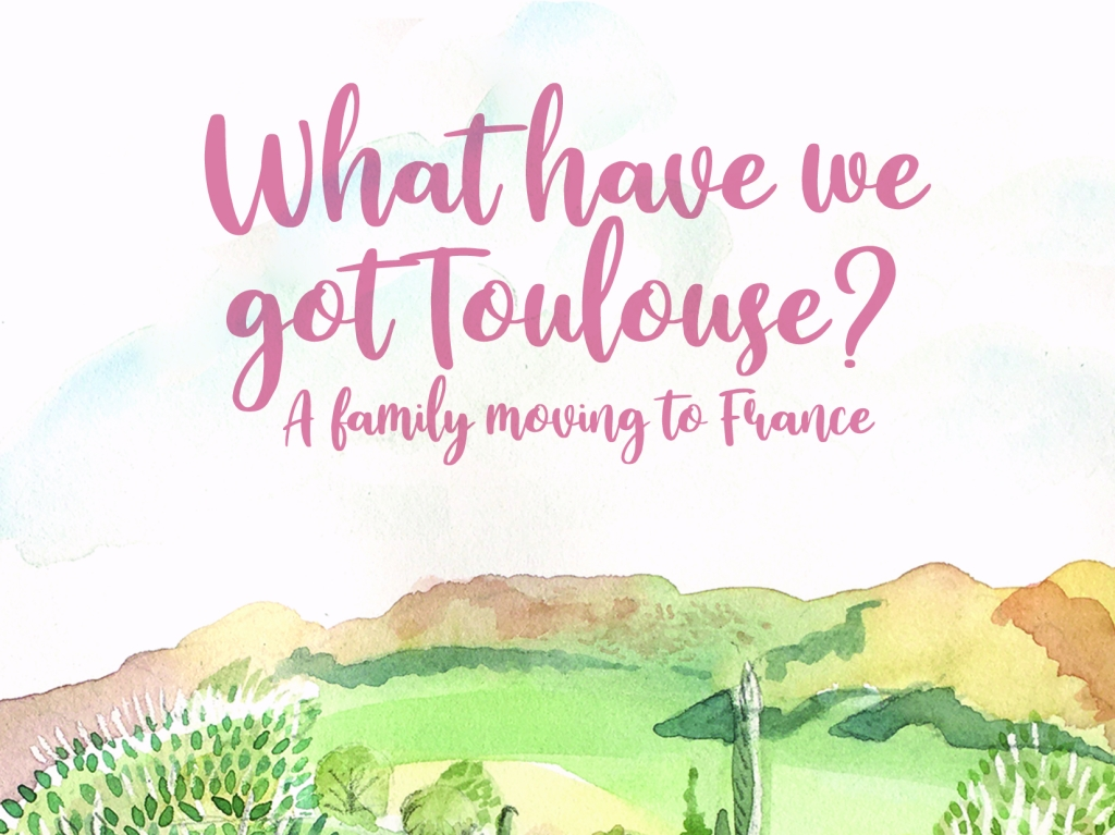 What Have we Got Toulouse | A Mother in France